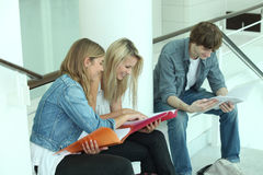 Teenagers revising together Royalty Free Stock Photo
