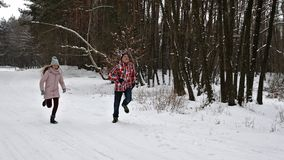 Teenagers running with their labrador dogs on a winter forest road. Chasing each other, slow motion stock video