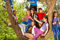 Teenagers sitting on benches of the tree Royalty Free Stock Photos