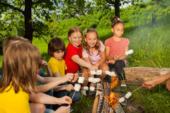 Teenagers sitting near bonfire with marshmallow Stock Photos