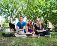 Teenagers studying on campus lawn Stock Photo