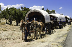 Teenagers traveling on covered wagons Royalty Free Stock Photography