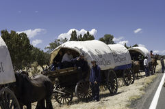 Teenagers traveling on covered wagons Royalty Free Stock Image