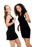 Teenagers with Wineglasses Royalty Free Stock Images