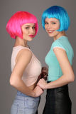 Teens in colorful wigs holding hands and posing. Close up. Gray background. Teens in colorful wigs holding hands and posing, blue wig, friendship, high fashion royalty free stock photography