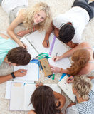 Teens Doing Homework Together Royalty Free Stock Image
