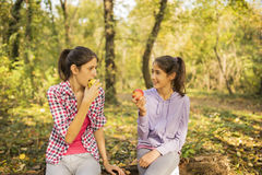 Teens in forest Stock Images