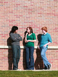Teens in front of brick wall. Teen girl flirting with boy as jealous boy watches Stock Photos