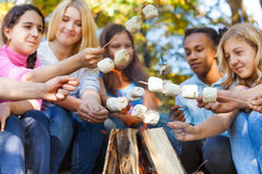 Teens hold marshmallow sticks on bonfire together Stock Image