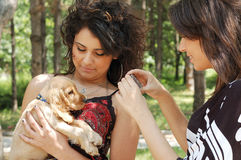 Teens with a little dog. Teenagers playing with a little dog in the park Royalty Free Stock Image