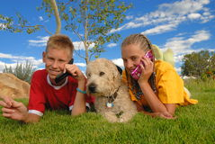 Teens with phones and dog  Stock Photo