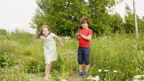 Teens play summer windy meadow flower petals throw. Caucasian children enjoy outdoor nature hold floral heads. Kids have fun blossom lawn summertime leisure stock video