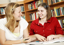Teens Study Together Stock Photography