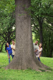Teens with tree in park Stock Photography
