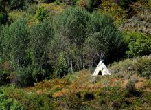 TeePee. American Indian TeePee on mountainside with trees and brush around stock image
