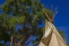 Teepees at a Date Farm, Death Valley Royalty Free Stock Image