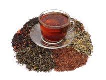 Tees - sortiert Stockbild