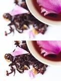 Teeschale Lizenzfreies Stockbild