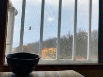 Teeschale auf dem Sofa mit Gitterfenster Lizenzfreie Stockfotografie
