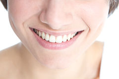 Teeth Stock Photography