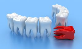 The teeth Royalty Free Stock Image