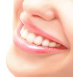 Teeth Royalty Free Stock Image