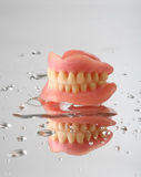Teeth Royalty Free Stock Images