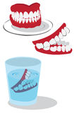 Teeth. Funny vector illustration of three teeth isolated on white background Royalty Free Stock Photos