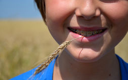 Teeth with braces. Teeth with dental braces and  ear of grain Royalty Free Stock Images