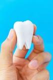 Teeth concept Royalty Free Stock Photo