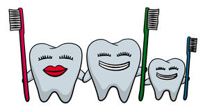 Teeth family. A family made up of teeth with smiling faces and holding toothbrushes Royalty Free Stock Image