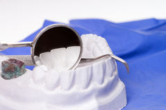 Teeth made of plaster Royalty Free Stock Images