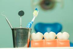Teeth model Stock Images