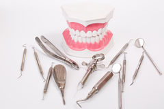 Teeth model and dental tool Stock Images