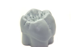 Teeth - molar Royalty Free Stock Photography