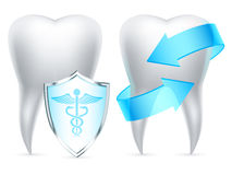 Teeth protection. Two teeth protected by shield and arrows Stock Images