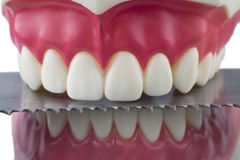Teeth and saw. Dental mold and a blade of a saw Stock Images