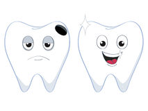 2teeth. A set of two cartoon human teeth Royalty Free Stock Images