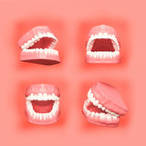 Teeth or tooth illustration, perspective views in mouth. 3D teeth or tooth illustration, perspective views in mouth royalty free illustration