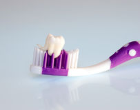 Teeth and Toothbrush Royalty Free Stock Photography