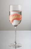 Teeth on Wine glass Stock Image