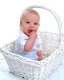 Teething Baby Boy in Basket royalty free stock images