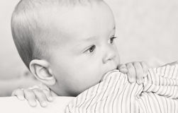 Teething baby. Boy chewing  a bed ( black and white Stock Image