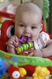 Teething Baby Girl. Six month old baby girl chewing on a teething toy and looking at the camera Royalty Free Stock Images