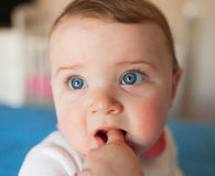 Teething concept. Baby girl with finger in mouth. Royalty Free Stock Image