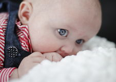Teething cute baby girl stock image
