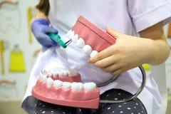 Teeths de cepillado Foto de archivo libre de regalías