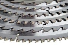 Teeths des disques pilny se ferment vers le haut Photo stock
