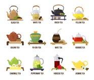 Teevektorgrün oder -tee in trinkendem Satz der Teekannenillustration fruchtigen Getränken des Jasmins und der rooibos auf Teatime lizenzfreie abbildung