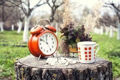 Teezeit Stockfotografie